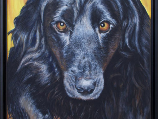 2013-03 – Commissioned Pet Portrait Painting by Cameron Dixon – Molly