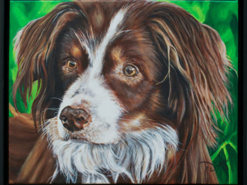 2013-04 – Commissioned Pet Portrait Painting by Cameron Dixon – Cedi