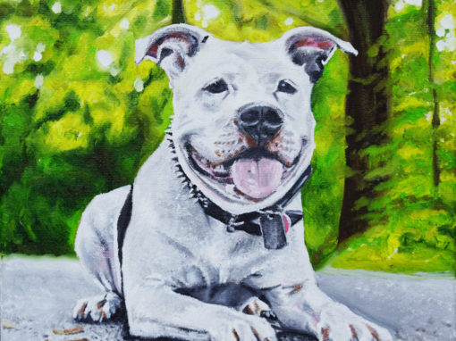 2015-03 – Commissioned Pet Portrait Painting by Cameron Dixon – Cowboy