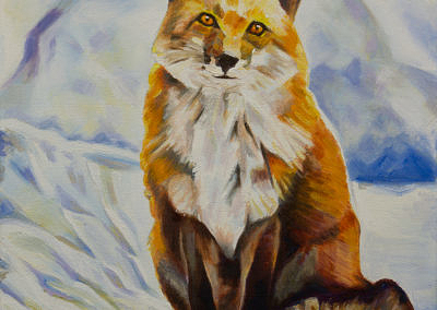 Fox Sitting in Snow by Cameron Dixon -Complete-front