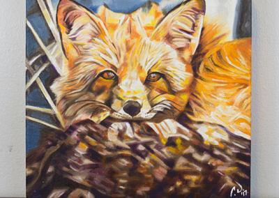 Cozy Fleece Fox by Cameron Dixon - DSC09936-complete-full