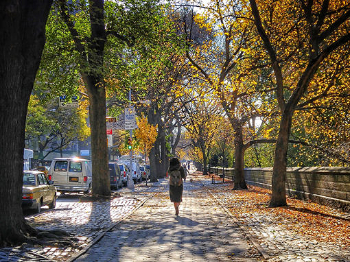 2016-11 – Central Park in Autumn – New York