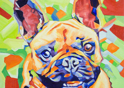 Popart-frenchie by Cameron Dixon-1080px-hq