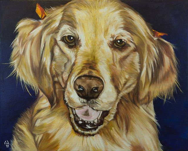 "Pet Portrait PaintingMaggieGolden Retriever16x20 Oil over AcrylicThe final coat of oil with the addition of the little bows that were in the original photo I worked from, this painting is complete. Head to my Etsy store to purchase your own before the Christmas rush. ""CameronDixonsArt"" @ Etsy#ny #nyc #bigapple #newyork #newyorknewyork #newyorkcity #manhatten #eastharlem #ilovenyc #photooftheday #igersofnyc #nylove #newyorkart #newyorklife #newyorkstyle #newyorkartist #canadianartist #newyork_instagram #petportrait #petpainting #goldenretriever #goldenretrieversofinstagram #oilpainting #art #paint #artistforhire #commission #goldenretrieversofig"