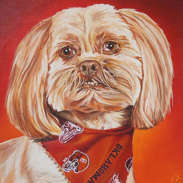 "Pet Portrait PaintingBell12 x 12 Oil over Acrylic The finished painting.Head to my Etsy store to purchase your own before the Christmas rush. ""CameronDixonsArt"" @ Etsy https://www.etsy.com/shop/CameronDixonsArt#ny #nyc #bigapple #newyork #newyorknewyork #newyorkcity #manhatten #eastharlem #ilovenyc #photooftheday #igersofnyc #nylove #newyorkart #newyorklife #newyorkstyle #newyorkartist #canadianartist #newyork_instagram #petportrait #petpainting #oilpainting #art #paint #artistforhire #commission#oklahoma #ou #oklahomasooners"