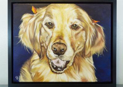 Cameron Dixon - DSC00114-pet-portrait-Mags-front-frame-1080px
