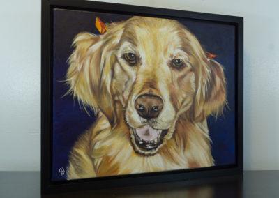 Cameron Dixon - DSC00115-pet-portrait-Mags-right-1080px