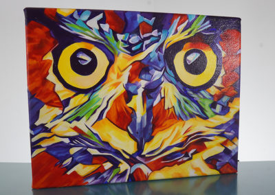 DSC00625_Pop Art Owl Face-by-cameron-dixon-left-1080px