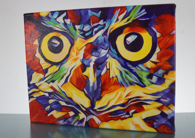 DSC00626_Pop Art Owl Face-by-cameron-dixon-right-1080px