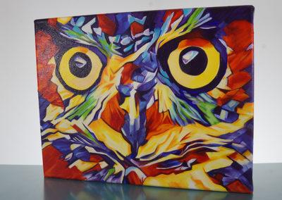 DSC00626_Pop Art Owl Face-by-cameron-dixon-right-1080px