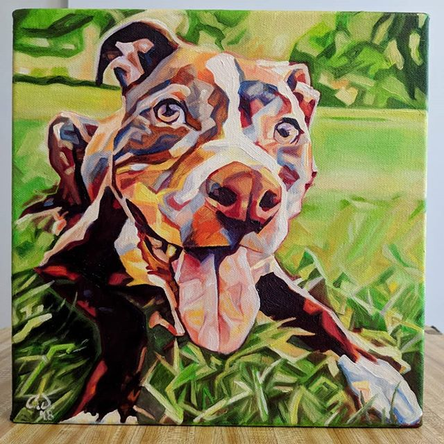 CONTEST 50% off a commissioned painting by me.  Like AND comment on Instagram  AND/OR Facebook  Pet Portrait Kane 12in x 12in x 1.375in Swipe to see original, framed, and video  Draw date June 22nd, 2018  Looking for a custom made painting of your pet or something else? www.camerondixon.com  Purchase directly through my Etsy shop or via my website/Facebook page: https://www.etsy.com/shop/CameronDixonsArt?ref=seller-platform-mcnav  www.camerondixon.com  www.facebook.com/cameron.dixon.art/