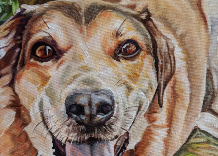 2018-03 – Commissioned Pet Portrait Painting by Cameron Dixon – Loki